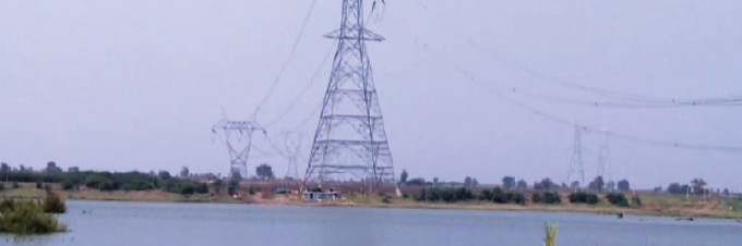 Record year for Power Grid Corporation of India